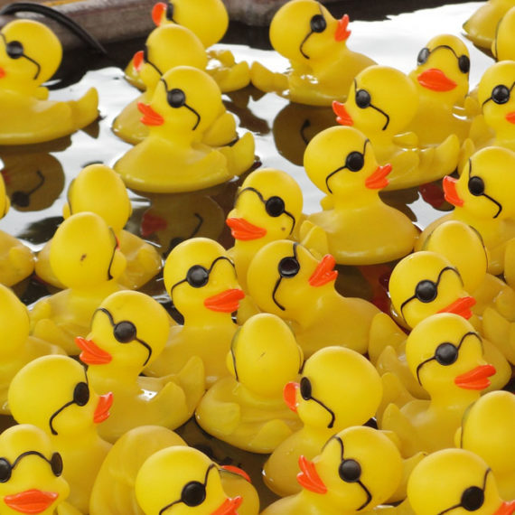 Lucky Ducks for Hire - Carnival Ride Hire